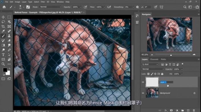 ps怎么去除图中挡住动物的铁丝网(3)