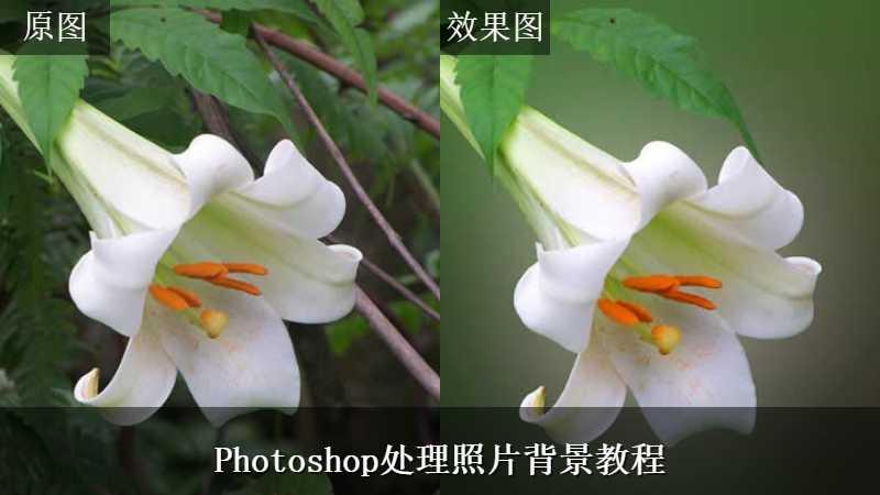 Photoshop处理照片背景教程