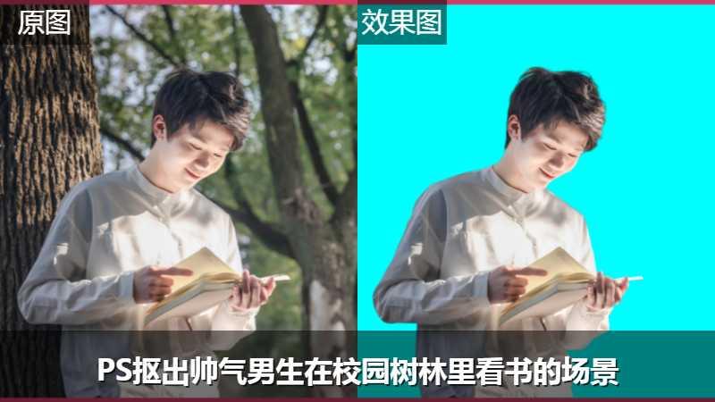 PS抠出帅气男生在校园树林里看书的场景