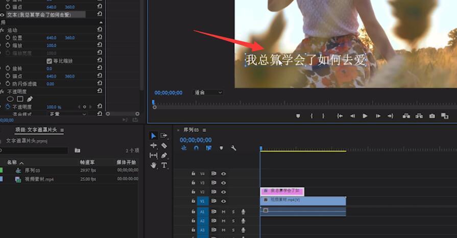 pr怎么制作ktv字幕(2)