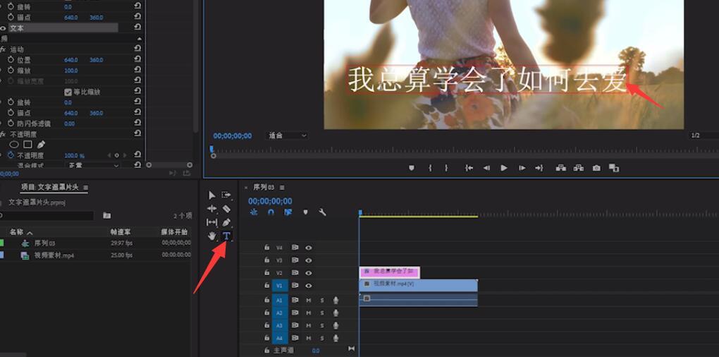 pr怎么制作ktv字幕(1)