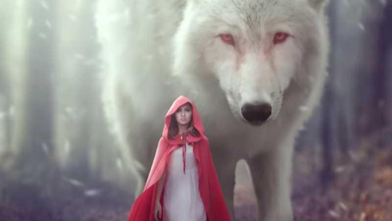 PS合成森林中的小红帽奇幻场景