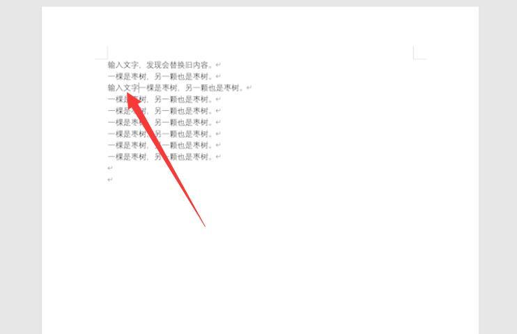 word 打字后面的字就会被删除(3)