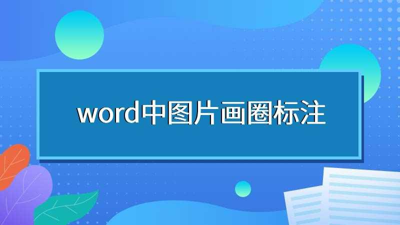 word中图片画圈标注