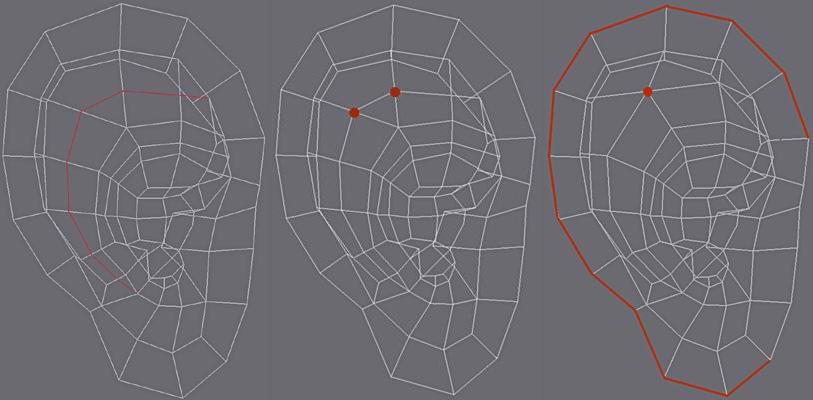 3ds Max耳朵建模教程(13)
