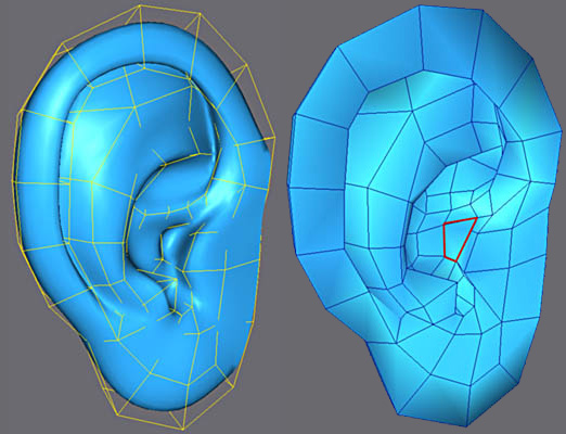3ds Max耳朵建模教程(15)