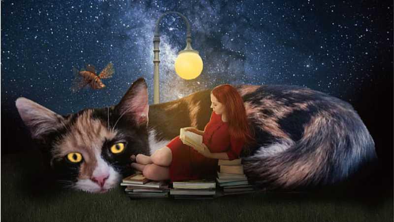 PS合成女孩和猫咪星空下阅读场景
