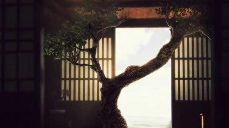 3D MAX制作树屋室内场景建模