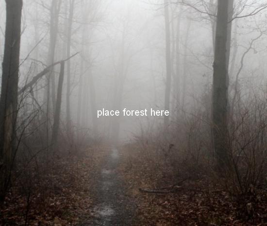 ps合成秋天树林中的美女场景(1)