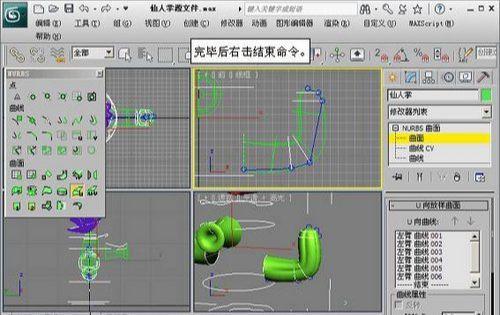 3DMAX NURBS仙人掌建模教程(12)