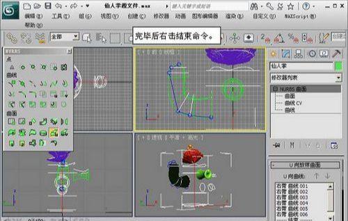 3DMAX NURBS仙人掌建模教程(4)