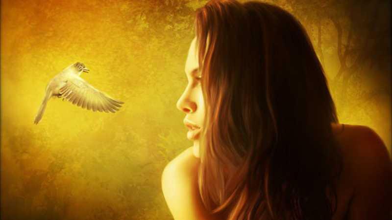 PS合成看着小鸟的美女教程